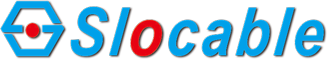 logo_zi